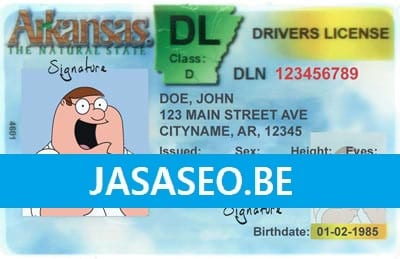Drivers License & Student Card Template PSD